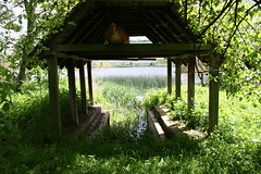 Boat? (Laura Burden Photography) Tags: blue trees roof shadow house lake green nature water canon reeds photography countryside boat photo sailing shed reserve canoe photograph shade boating sail loch canoeing pillars bushes beams rafters 400d