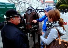 DSC04149 (xd_travel) Tags: vienna austria 2014 menatwork