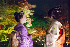 L1006838 (yukimune) Tags: leica temple 50mm kyoto maiko geiko    koudaiji     aposummicronm yukimune yasunaga
