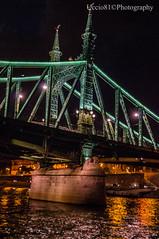 Liberty Bridge - Budapest (Uccio81 ) Tags: bridge b liberty dc sony budapest sigma ob 18200 ib fotocamera 3563 uccio81 dslra580