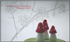 31. Dezember 2014: Meine Neujahrswünsche für euch! (Gertraud-Magdalena) Tags: winter dezember neujahrswünsche