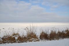 winter light (leuntje) Tags: netherlands marken durgerdam ijsselmeer ijmeer gouwzee