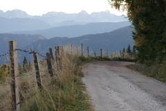 Nockberge (Harald Reichmann) Tags: alm zaun nockberge bergstrase wllanernock