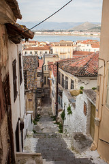 Greece-2015-129 (Mike Oncley) Tags: travel food dog castle students cat greek ancient ruins delphi athens greece abroad olympia sparta dine drhood