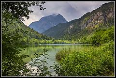 L1001944 - Thumsee, Berchtesgadener Land (Max-Friedrich) Tags: bayern bavaria natur landschaft thumsee berchtesgadenerland leicam8