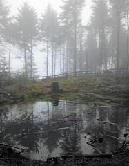 Misty reflections at Beacon Fell (Tony Worrall Foto) Tags: county wood uk trees england mist reflection nature wet water pool misty stream tour open place northwest grim country north visit location lancashire area dim northern update tarn attraction beaconfell lancs bowland welovethenorth 2015tonyworrall