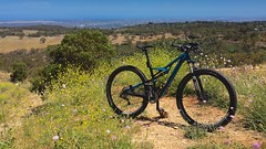 Rest at high noon (jim.tavasci) Tags: flowers bike landscape ride bright mountainbike samsung australia hills riding galaxy adelaide noon hilltop specialized camber eagleonthehill eaglemountainbikepark note4