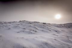 Snow Desert II
