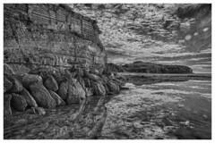 Narrabeen B&W A3 (seasonleban) Tags: bw white black beach nsw hdr narrabeen