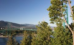 Prospecting (Michael Dunn~!) Tags: bridge trees sky canada vancouver britishcolumbia stanleypark lionsgatebridge suspensionbridge prospectpoint roadtrip2016