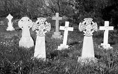 105 Tombstone / Graveyard (SamKirk9) Tags: graveyard blackwhite suffolk graves gravestone tombs orford suffolkcoast 116picturesin2016 105tombstonegraveyard