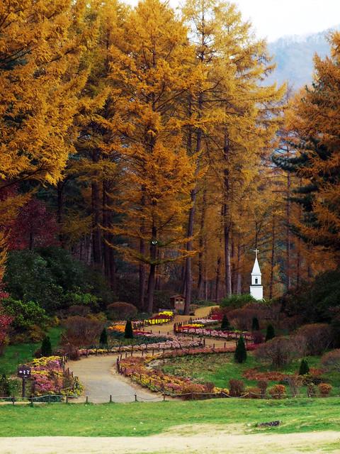 가을 (4)