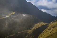-14 (billlushana1) Tags: travel cloud mountain flower tree sony taiwan hike peaks  taroko tw  tarokonationalpark hehuanshan    mountain 100peaksoftaiwan taiwantop100peaks sonya7r