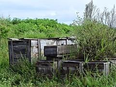 DSC_0822 (anebeatrizduarte@ymail.com) Tags: arquitetura box natureza diferente abstrato edifcio aoarlivre