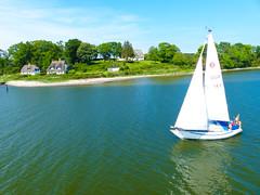 Segelboot auf der Schlei - Sailboat on the Schlei (Ostseeman) Tags: wasser segelboot schlei reetdachhaus