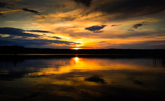 Liquid Gold (--Conrad-N--) Tags: reflection bad may kurort scharmtzelsee saarow