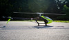 DSC_8862.jpg (nathanwalls) Tags: rc heli helicopter msh protos max v2 yellow