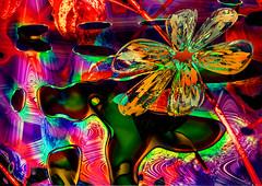 Flor. 27281872870_27e96f7ecd_o (seguicollar) Tags: imagencreativa photomanipulacin art arte artecreativo artedigital virginiasegu paisaje textura brillante colorido flor flower planta vegetal vegetacin tallo
