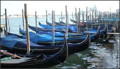 The gondolas of Venice I (K. Haagestad) Tags: venice italy boats italia venezia gondolas canalgrande