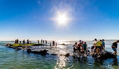 Everyone on Deck (ihikesandiego) Tags: san diego shipwreck carlo monte coronado uss