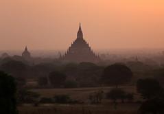 2016myanmar_0440a (ppana) Tags: bagan alodawpyay pagoda ananda temple bupaya dhammayangyi dhammayazika gawdawpalin gubyaukgyi myinkaba wetkyiin htilominlo lawkananda lokatheikpan lemyethna mahabodhi manuha mingalazedi minochantha stupas myodaung monastery nagayon payathonzu pitakataik seinnyet nyima pagaoda ama shwegugyi shwesandaw shwezigon sulamani thatbyinnyu thandawgya buddha image tuywindaung upali ordination hall
