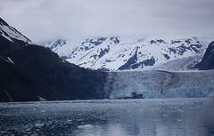 cep-dsc_0413 (honeyGwhiz) Tags: alaska glaciers princewilliamsound fjord floatingice miniicebergs