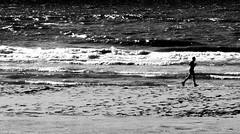 The Quiet Beach (jaap spiering | photographer) Tags: street sea people blackandwhite bw holland beach nature netherlands monochrome strand coast noiretblanc zwartwit streetphotography beachlife zee denhaag mens thehague mensen kust 070 gx8 strandleven jaapspiering jaapspieringphotographer jaapspieringfotografie