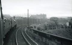 img904 (OldRailPics) Tags: newcastle coast steam east kingfisher british locomotive railtour a4 society railways ltd preservation 60024