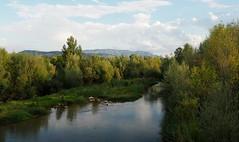 La Noguera Pallaresa a Tremp (tgrauros) Tags: noguerapallaresa rius tremp catalunya vilamitjana catalonia cataluña catalogne rivers aigua