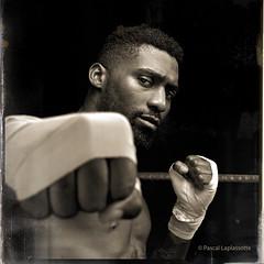 A new old boxer ! (pascalbordeaux33) Tags: noiretblanc noir et blanc doumced boxeur boxer