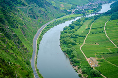 Bird's Eye View of the Mosel (spcoonley) Tags: fujifilm fuji xe1 xf35mmf14 mosel river valley bremm germany deutschland stuben convent ruins vineyards