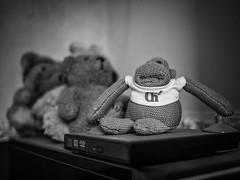 270/366 2016 - Chimping (fishyfish_arcade) Tags: 20mmf17 gx7 lumix panasonic panasonic20mmf17asphlumixg pgtips tea monkey chimp blackwhite blackandwhite bw monochrome mono