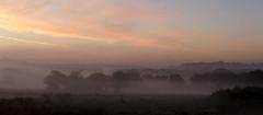 Richmond Park. (richard.mcmanus.) Tags: richmondpark london england dawn richardmcmanus clouds mist landscape gettyimages