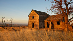 Goldendale View (Flint Roads) Tags: old trees usa house abandoned field rural sunrise washington shadows decay windmills faded wa forsaken deteriorate