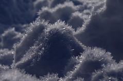 Hoarfrost on snow