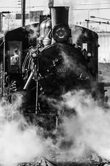 Rambler at Christmas (Peyton Gupton) Tags: old railroad sunset train grit knoxville tennessee railway trains steam steamy steamengine 280 ktown steamlocomotive threeriversrambler