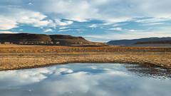 Lake Lahontan (Gentilcore) Tags: silversprings unitedstates nevada lyoncounty lakelahontan nevadadivisionofstateparks lahontanstaterecreationarea