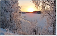 A cold walk along the river (HJsfoto) Tags: winter nature landscape soe musictomyeyes potofgold almostanything bodträskfors