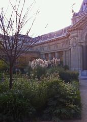 2014.10.30.03 PARIS - Petit Palais - Le jardin (alainmichot93) Tags: paris france seine architecture jardin 75 iledefrance 2014 petitpalais xixmesicle paris8mearrondissement