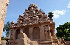 Pancha Rathas, Kanchipuram, India (josepsalabarbany) Tags: mango tropical species streetlife victorian jewel rajput fort jodhpur thanjavur jaipur gopura church stupa mandapa shikhara amalaka kalasha parvati siva delhijodhpur oldcity apsara khajuraho konark ellora chennai gujarat mumbai goa mysore karnataka bangalore punjab amritsar jainism ranakpur kobalam uttarpradesh tajmahal fatehpursikri ghat ganges benares varanasi orchha maharashtra god ganesh vimana temple bengal tyger elephant curry journey travel sculpture sea rajasthan kerala delhi hindu moguls people sun architecture art asia india beach rathas kanchipuram nikond7000 josepsalabarbany