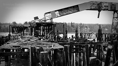 Rotting remains of the once thriving Port Gamble Saw Mill. (Brendinni) Tags: trees history water rotting washington moss steel piers historic remains sawmill portgamble bost portgamblewa wahistory portgamblesawmill