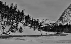 Winter View (Sherlock77 (James)) Tags: winter snow mountains ice alberta banff bowriver