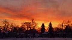 Beautiful sunrise in Edmonton Alberta (krystyna_piw) Tags: city trees light sky orange cloud sun canada tree nature beautiful yellow clouds sunrise fantastic movement edmonton illumination alberta nwn colorfulsunrise world100f thebestpicturegallery silhouettephotography dec82014 bautifulsunrise