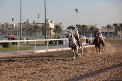 (Qatar National Day) Tags:      qnd