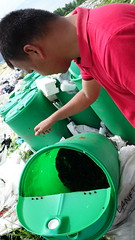 DSC08100 (Imanol@Sandec) Tags: philippines waste compost csf compostbin 2014