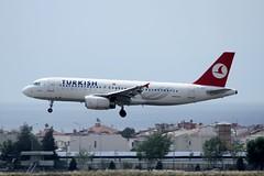 TC-JPR (IndiaEcho Photography) Tags: canon turkey eos airport ataturk aircraft aviation istanbul aeroplane civil airbus airlines ist turkish airliner turk thy airfield a320 tk hava yollari ltba 1000d tcjpr