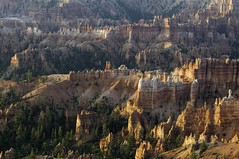 Bryce Canyon al amanecer (Roberto Cumsille) Tags: park red sunrise utah us nationalpark rojo ut canyon amanecer national bryce cañon robertocumsille
