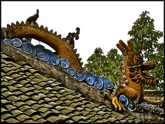 guardian of the gate ..... temple of shibaozhai (ana_lee_smith) Tags: china travel red tourism river temple photography pagoda dragon symbol north bank pavilion yangtze revered analeesmith guardianofthegate templeofshibaozhai