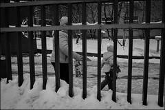 0A77m2_DSC01504 (dmitry_ryzhkov) Tags: life street city winter ladies portrait people urban blackandwhite bw woman white motion black art public monochrome face closeup kids lady fence children geotagged photography photo kid movement eyes women europe moments day shot image photos russia walk moscow live candid streetphotography streetportrait pedestrian scene stranger walker pedestrians moment unposed citizen dmitry candidportrait alphasony ryzhkov ilca77m2