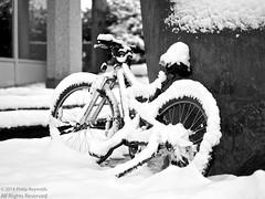 icicle bicycle (The Cassandra Project) Tags: schnee winter snow season schweiz switzerland swiss luzern svizzera lucerne emmen wintry sveitsi winterlich wintereinbruch coldsnap emmenbrücke emmenbronx
